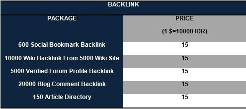 Backlink1 Social Media Services