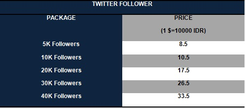 Twitter Followers1 Social Media Services